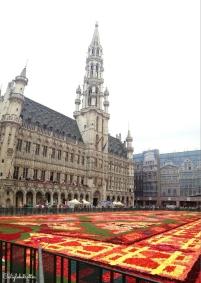 Brussels & the Flower Carpet, Belgium - California Globetrotter