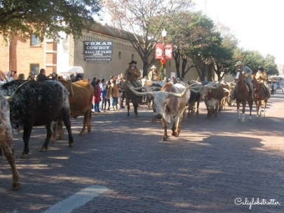 Old Town Fort Worth, Texas - California Globetrotter