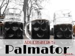Adlersberg's Palmator - California Globetrotter
