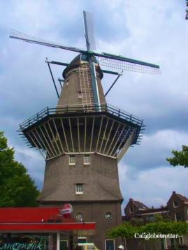 Amsterdam, The Netherlands - California Globetrotter