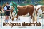 Königsee Almabtrieb - California Globetrotter