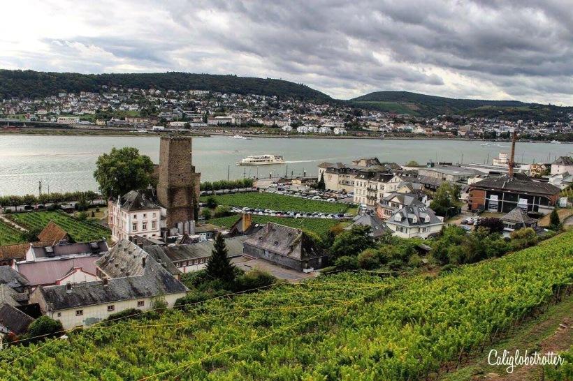 The Darling Storybook Town of Rüdesheim am Rhine, Germany - California Globetrotter